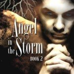 Angel in the Storm by Lisa Grace, a review