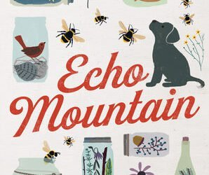 Echo Mountain by Lauren Wolk, a review